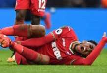 Swansea City kehilangan dua pemainnya, Leroy Fer dan Wilfried Bony di sisa musim ini akibat cedera berbeda.
