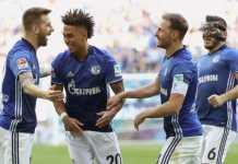 Prediksi Hamburg vs Shalke 04, Liga Jerman