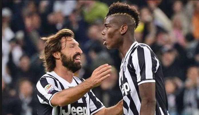 Berita Bola, Manchester United, Juventus, Andrea Pirlo, Paul Pogba
