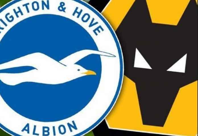 Liga Inggris, Brighton, Wolverhampton