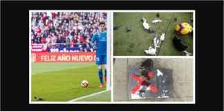 Pengkhianat Thibaut Courtois Dilempari Tikus Oleh Fans Atletico Madrid