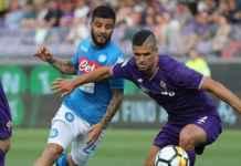 Prediksi Napoli vs Fiorentina, Liga Italia 19 Januari 2020