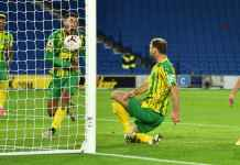 Brighton vs West Brom, Liga Inggris